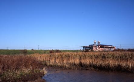 RSPB Rainham Marshes